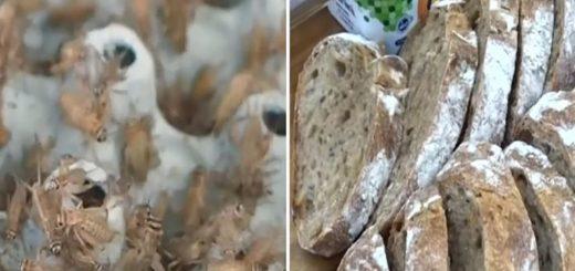 странный хлеб