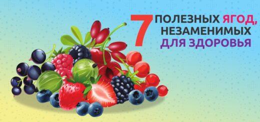 полезных ягод