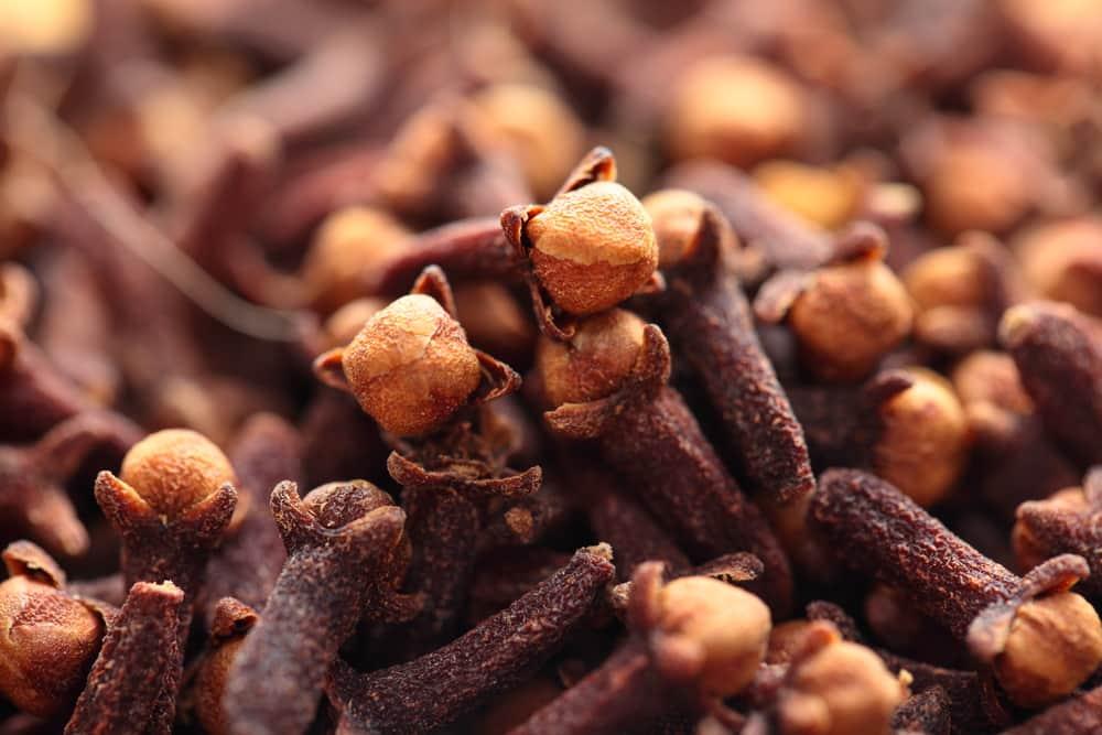 полезные свойства пряности гвоздики