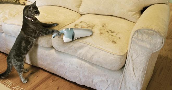 чистку диванов